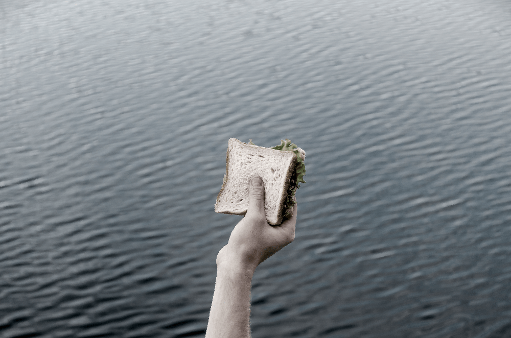 person holding a sandwich over the water